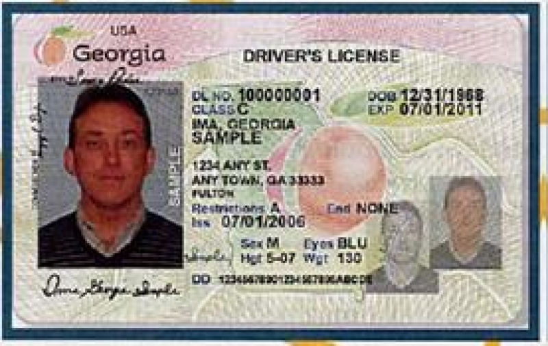 Georgia drivers license handicapdownload free software for Fishing license for disabled person