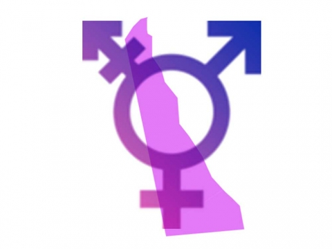 gay get well ecard