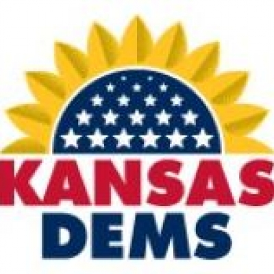 kansas democrats try to regroup after chairman resigns